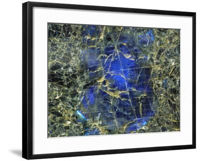 Close-up of Abstract Texture--Framed Photographic Print