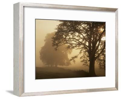 Autumn Morning, Near Dryman, Stirling, Scotland--Framed Photographic Print