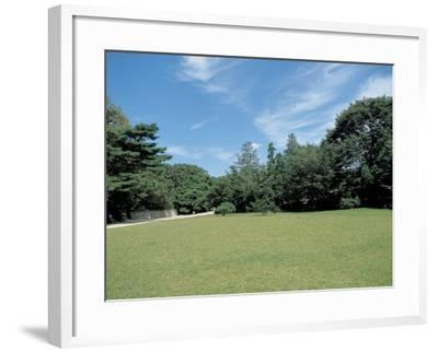 A Lawn--Framed Photographic Print