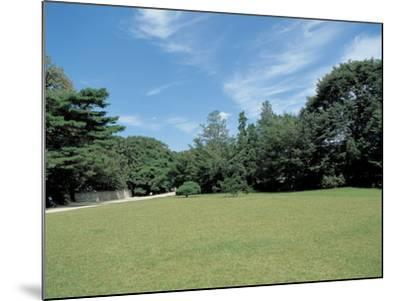 A Lawn--Mounted Photographic Print