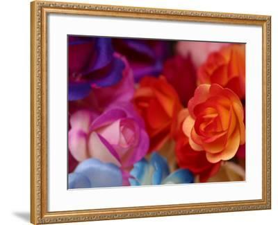 Vibrant and Colorful Arrangement of Beautiful Silk Roses--Framed Photographic Print