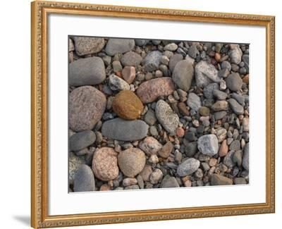 Variety of Stones and Pebbles on the Ground--Framed Photographic Print