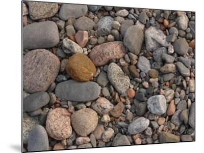Variety of Stones and Pebbles on the Ground--Mounted Photographic Print
