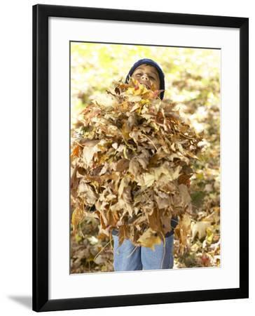 Little Boy Carrying Huge Pile of Leaves--Framed Photographic Print