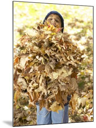 Little Boy Carrying Huge Pile of Leaves--Mounted Photographic Print