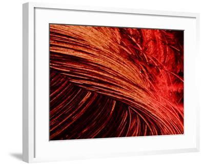 Brush Strokes in Red Paint--Framed Photographic Print