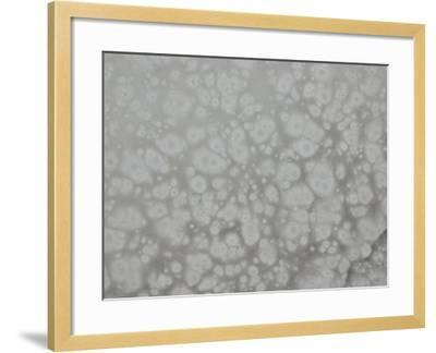 Abstract Background Pattern in Gray--Framed Photographic Print