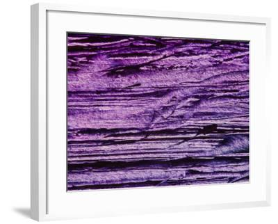 Purple, Weathered Background--Framed Photographic Print