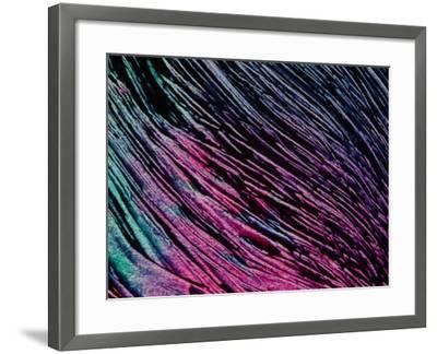 Purple and Blue Brush Strokes--Framed Photographic Print