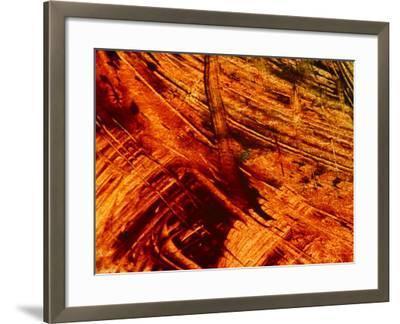 Fiery Orange Paintbrush Strokes--Framed Photographic Print