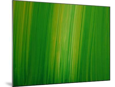 Striated Green Background--Mounted Photographic Print