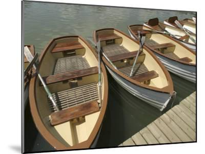 Rowboats with Oars Alongside a Dock--Mounted Photographic Print