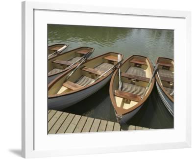 Row of Docked Rowboats--Framed Photographic Print