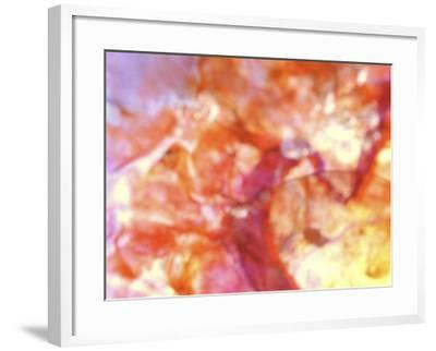 Close-Up of Abstract Purple, Red and Orange Rock Background--Framed Photographic Print