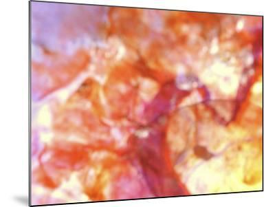 Close-Up of Abstract Purple, Red and Orange Rock Background--Mounted Photographic Print