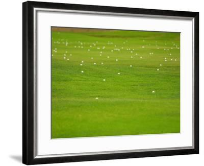 Bright and Vibrant Green Grassy Field--Framed Photographic Print