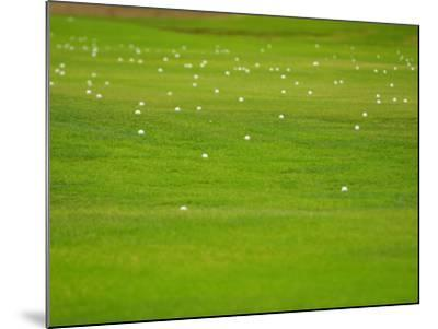 Bright and Vibrant Green Grassy Field--Mounted Photographic Print