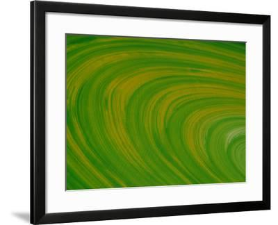 Green Background with Circular Striations--Framed Photographic Print