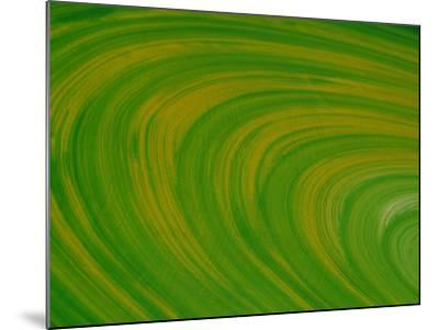 Green Background with Circular Striations--Mounted Photographic Print