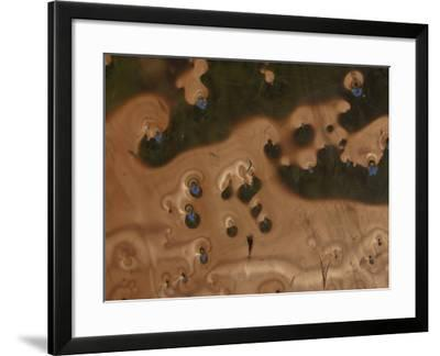 Abstract Pattern with Organic Texture--Framed Photographic Print
