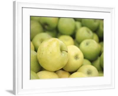 Pile of Fresh and Delicious Green Apples--Framed Photographic Print