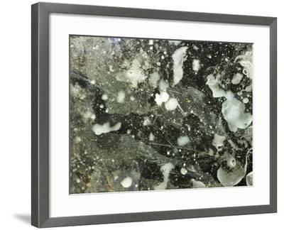Droplets of Water on Gray Mottled Surface--Framed Photographic Print