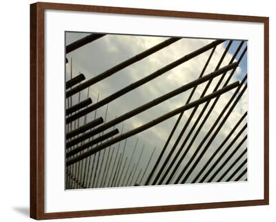 Suspended Bamboo Shafts--Framed Photographic Print