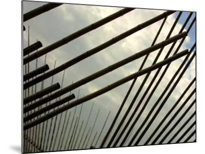 Suspended Bamboo Shafts--Mounted Photographic Print