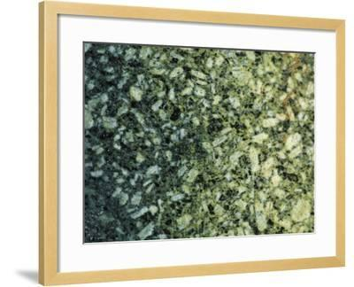 Close-Up of White and Black Mottled Marble--Framed Photographic Print