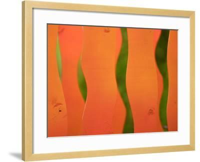 Wavy Orange Object Background--Framed Photographic Print