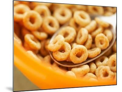 Spoon in Bowl of Breakfast Cereal--Mounted Photographic Print