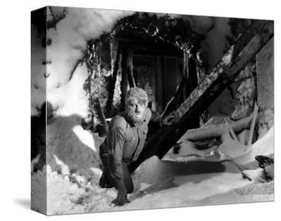 Frankenstein Meets the Wolf Man--Stretched Canvas Print