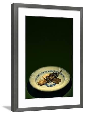 Bird Plate-Johan Lilja-Framed Photographic Print