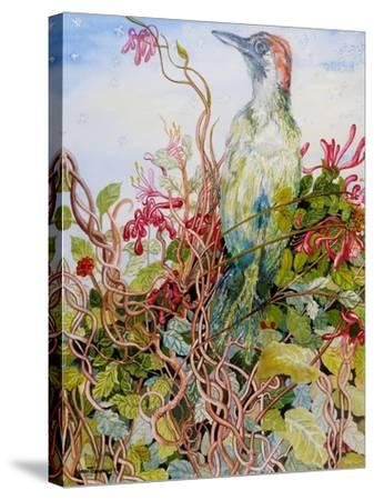 Woodpecker in the Honeysuckle, 2010-Joan Thewsey-Stretched Canvas Print