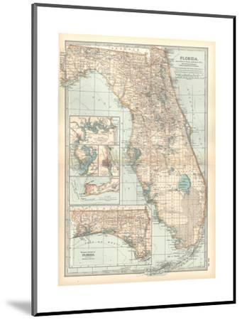 Plate 81. Map of Florida. United States. Inset Maps of Jacksonville-Encyclopaedia Britannica-Mounted Giclee Print
