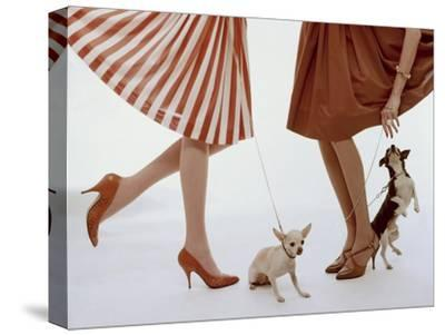 Vogue - February 1959 - Pumps and Pups-William Bell-Stretched Canvas Print