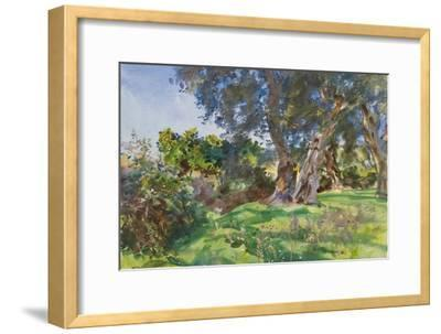 Olive Trees, Corfu-John Singer Sargent-Framed Giclee Print