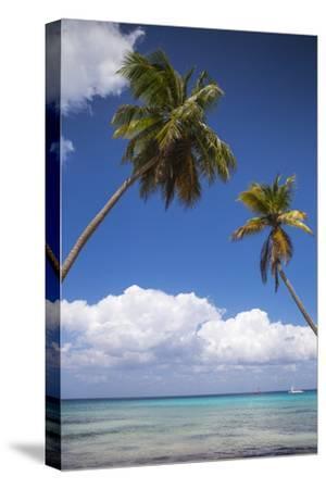 Dominican Republic, Punta Cana, Parque Nacional Del Este, Saona Island, Catuano Beach-Jane Sweeney-Stretched Canvas Print