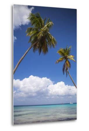 Dominican Republic, Punta Cana, Parque Nacional Del Este, Saona Island, Catuano Beach-Jane Sweeney-Metal Print