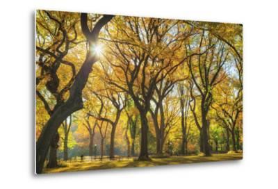 Usa, New York City, Manhattan, Central Park, the Mall-Michele Falzone-Metal Print
