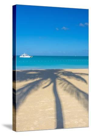 Antigua, Jolly Bay Beach, Palm Trees Casting Shadows-Alan Copson-Stretched Canvas Print