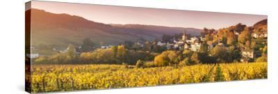 Pernand-Vergelesses and its Vineyards, Cote D'Or, Burgundy, France-Matteo Colombo-Stretched Canvas Print