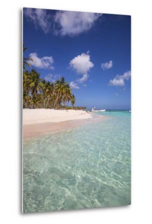 Dominican Republic, Punta Cana, Parque Nacional Del Este, Saona Island, Canto De La Playa-Jane Sweeney-Metal Print