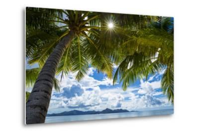 Palm Trees and Tropical Beach, La Digue, Seychelles-Jon Arnold-Metal Print