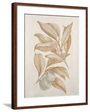 Botanicals III-Rikki Drotar-Framed Giclee Print
