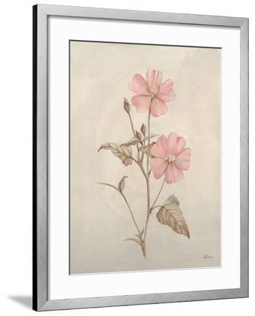 Botanicals XI-Rikki Drotar-Framed Giclee Print