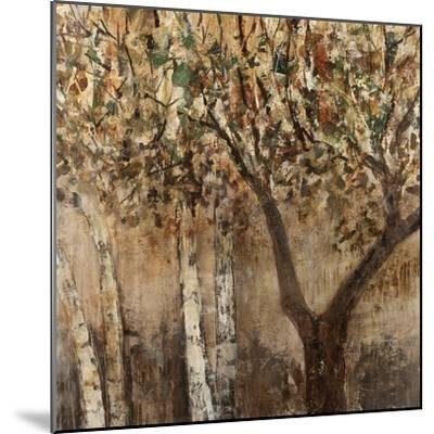 Tree Shade-Tim O'toole-Mounted Giclee Print