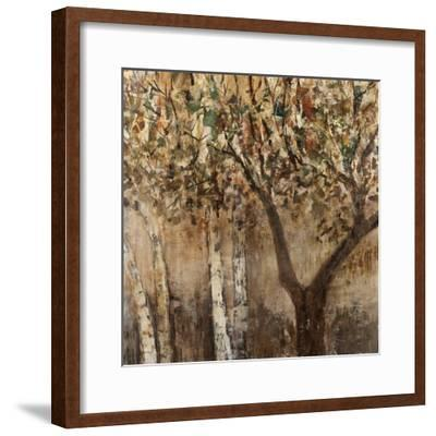 Tree Shade-Tim O'toole-Framed Giclee Print
