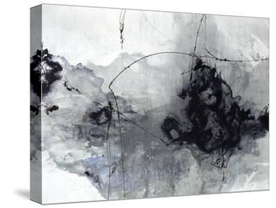 Dying Ember-Joshua Schicker-Stretched Canvas Print