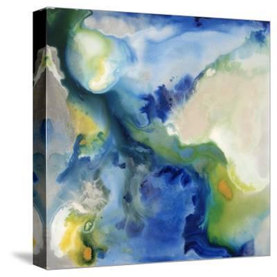 Flint I-Joshua Schicker-Stretched Canvas Print